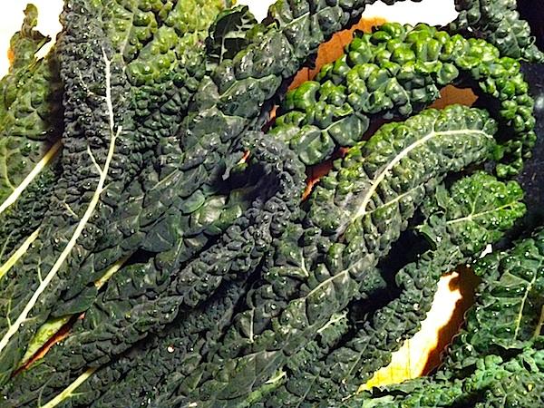 Cavolo Nero or Jacinto Kale