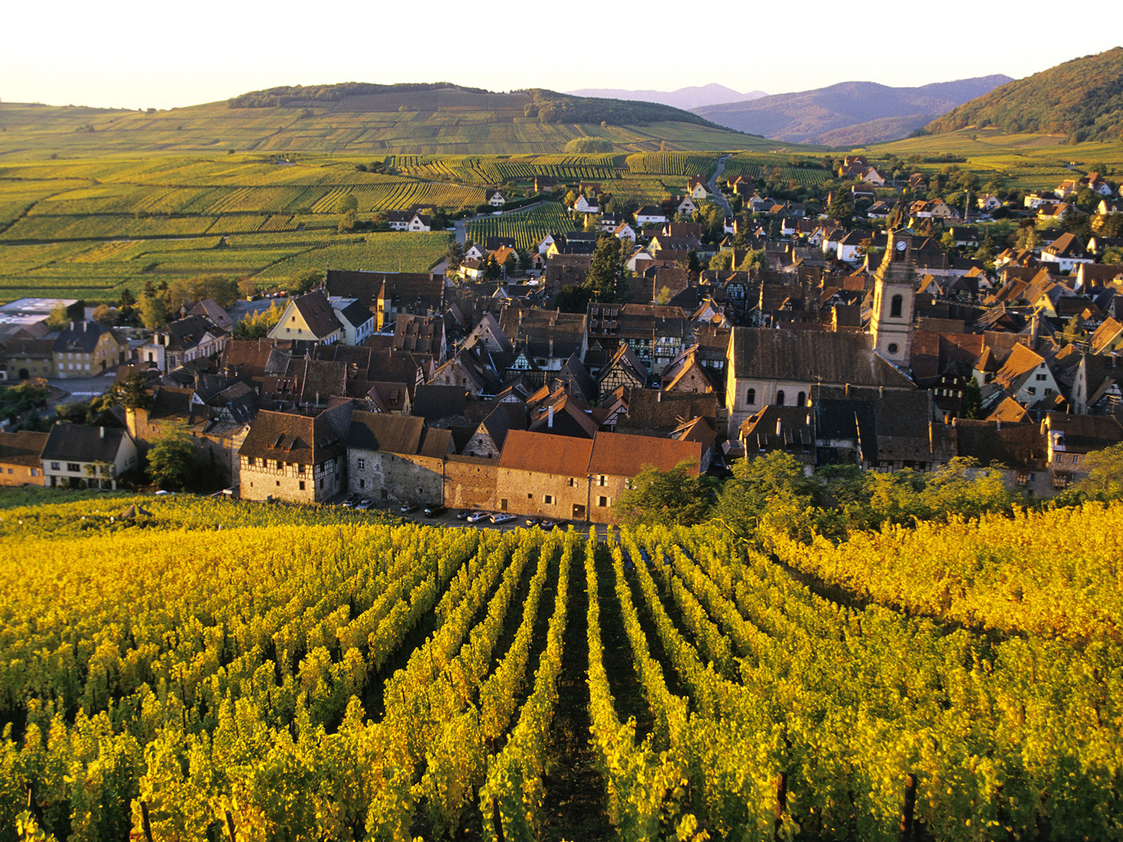 world france city of vineyards in alsace france 073426 jpg