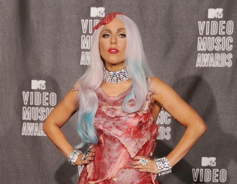 Lady Gaga Meat Dress Crop