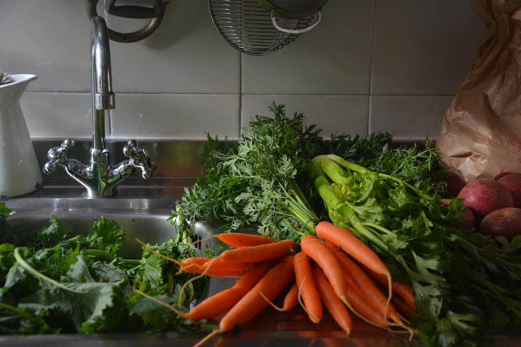Roman Vegetables by Rachel Roddy