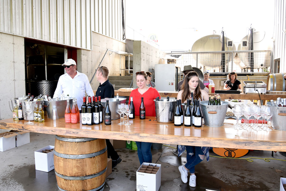 Wine and Cider at Norm Hardie