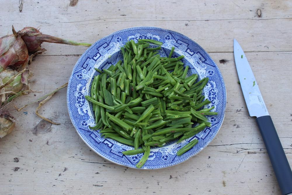 Runner Beans from the Garden