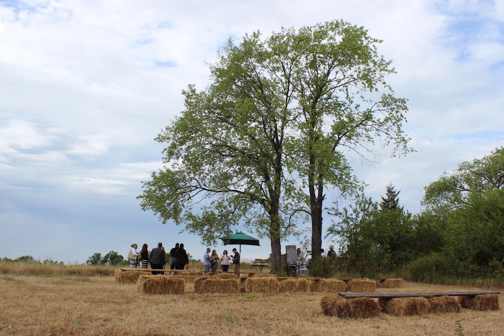 The Ridge at Jamie Kennedy Farm