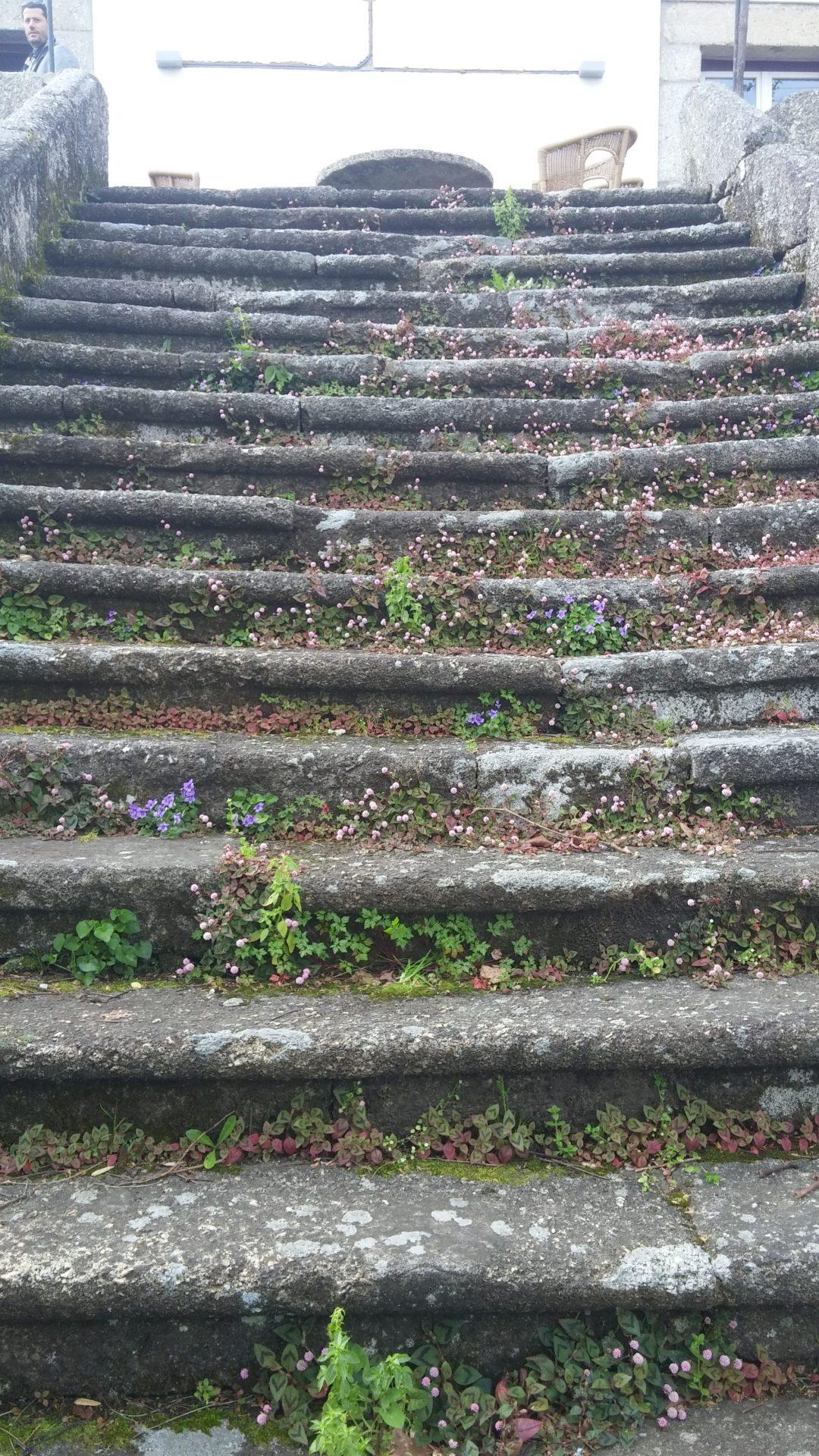 Aphros steps