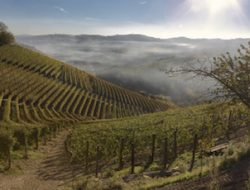 piedmont-valley