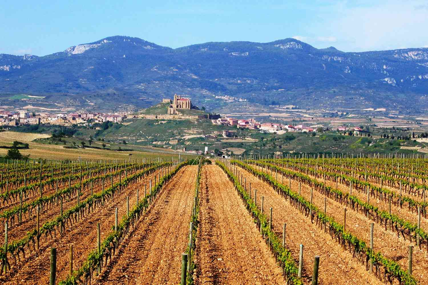 rioja-wine-region