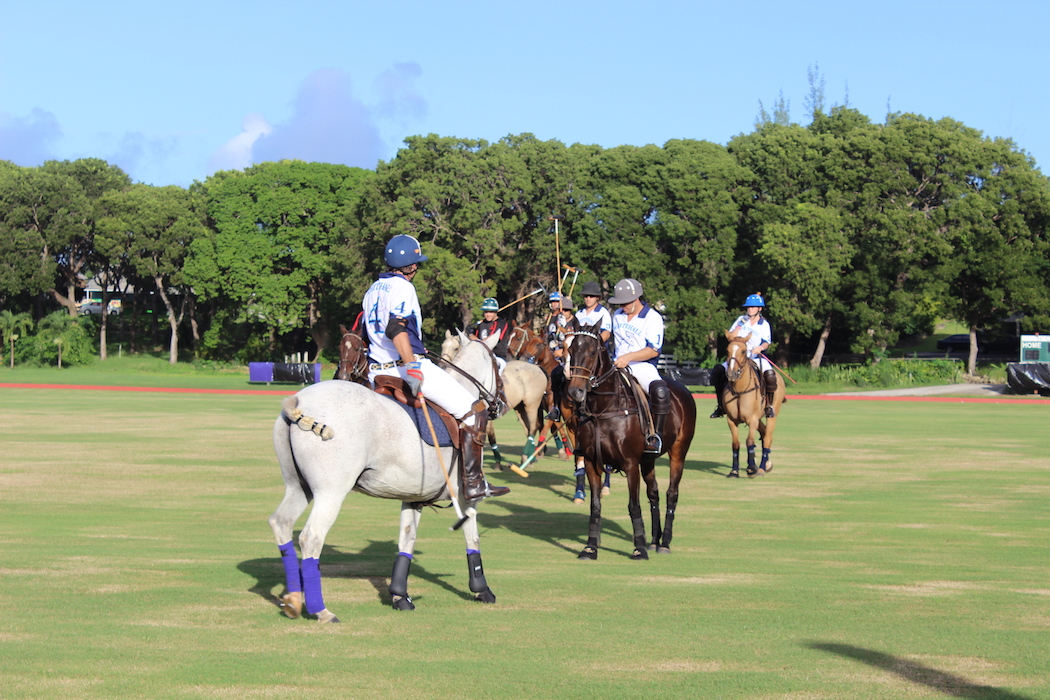 polo-event-in-barbados