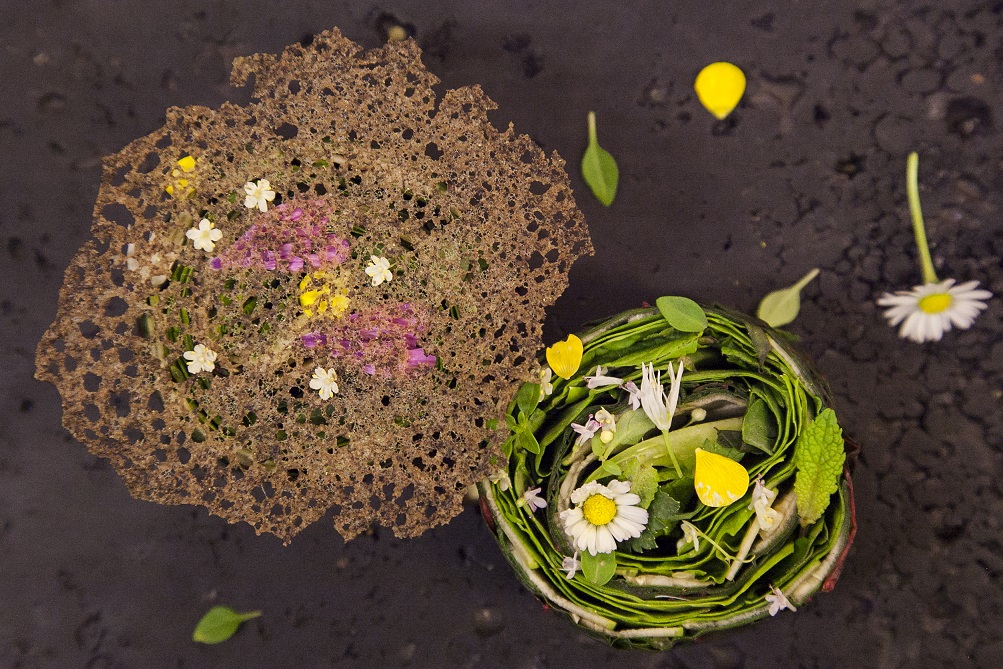 From our garden: vegetables, herbs and flowers, veil of buckwheat,  (Fina Puigdevall, Les Cols, Olot, Spain)