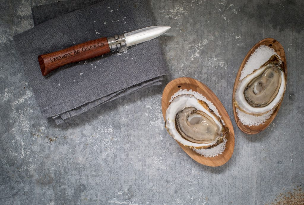 A perfect freshly-shicked Cascumpec oyster. Photo credit: Heather Ogg