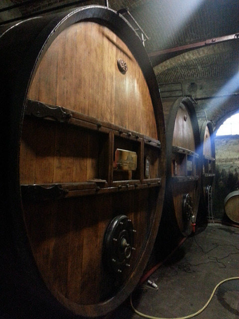 Some larger traditional barrels at Marchesi Di Barolo, Piedmont.