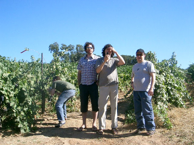 Alex Hamilton, Chef Jamie Kennedy, Anton Potvin, and Mitko Milev in the Zinfandel vineyards at Montevina, Amador County back in 2006.