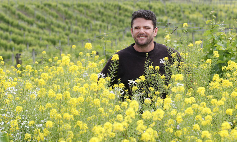 Hayden Penny, self-styled Winemaker Of The Supernatural, tells us about his thoughts on producing Sauvignon Blanc in a more natural manner.